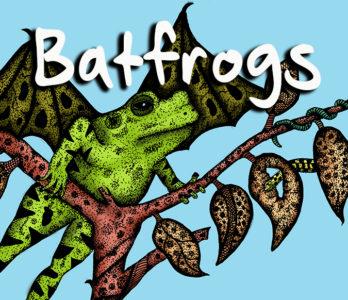Batfrogs